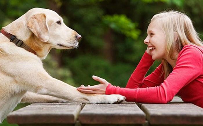Как разговаривать с собакой?