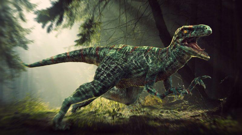 Велоцираптор: Про жизнь и поведение умнейшего динозавра