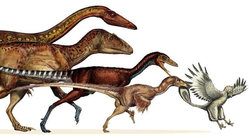 Эволюция: Почему динозавры превратились в птиц?