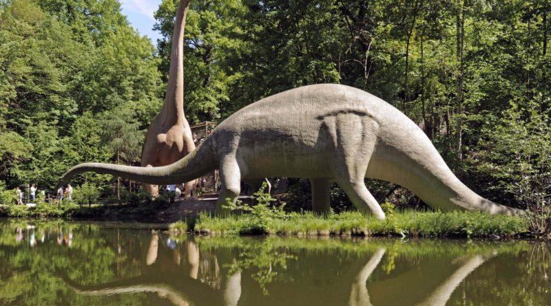 Диплодок: Самый ЗАМУЧЕННЫЙ динозавр