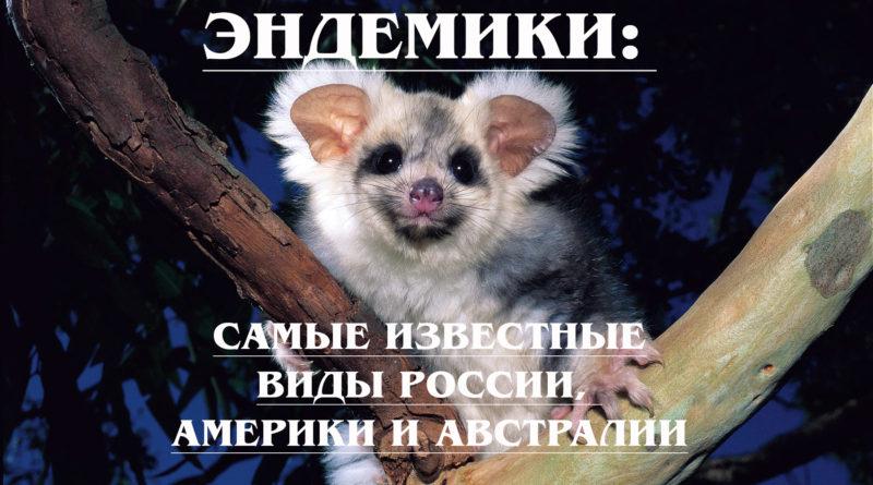 ЭНДЕМИКИ: Кто такие эндемики и где они обитают? Известные виды России, Америки и Австралии