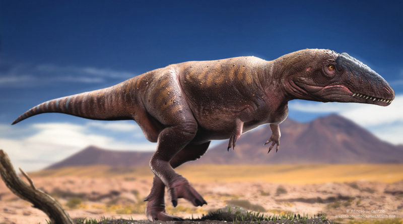 Кархародонтозавр: Убийца самых больших динозавров