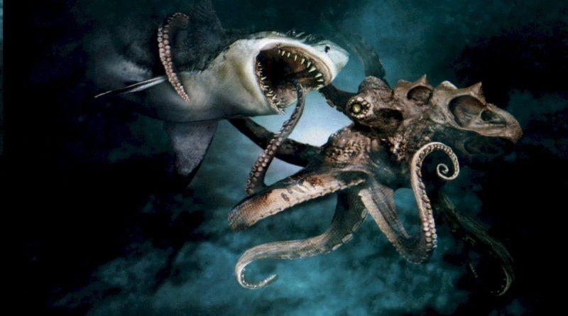 Гигантский осьминог: Чудеса эволюции