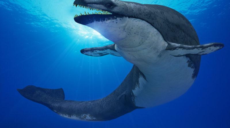 Базилозавр: Древний Кит-Змея