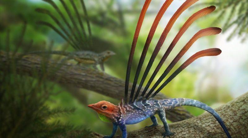 Лонгисквама: Киргизская ящерка с крыльями