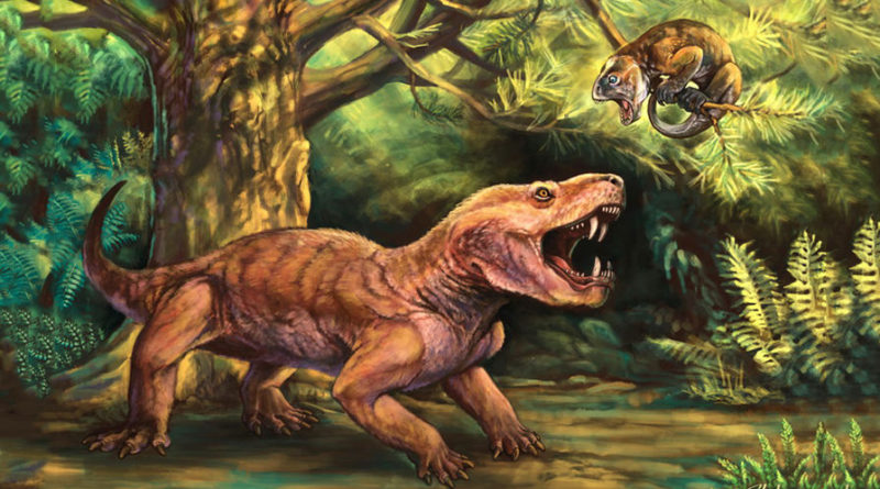 Тероцефал: Промежуточное звено между рептилиями и млекопитающими