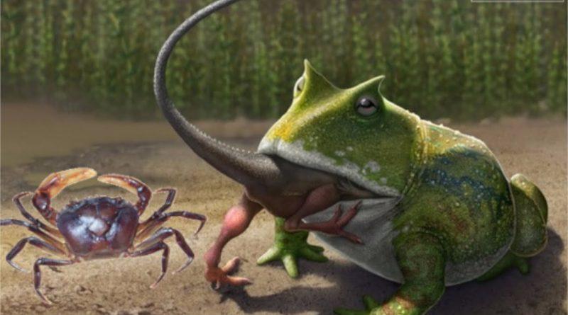 Жаба Дьявола: Лягушка, которая ела динозавров
