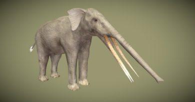 Стеготетрабелодон: Доисторический слон с четырьмя бивнями