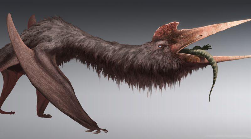 Кетцалькоатль: Крупнейшее летающее существо в истории планеты