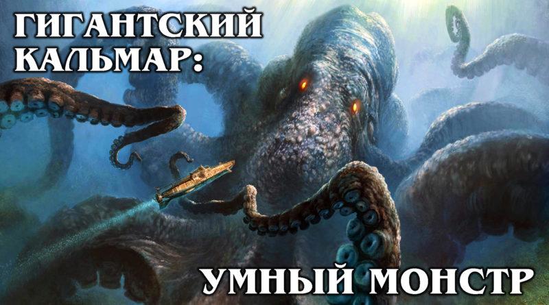 ГИГАНТСКИЙ КАЛЬМАР: Кракен существует! Умный глубоководный монстр огромных размеров | Интересные факты про морских обитателей