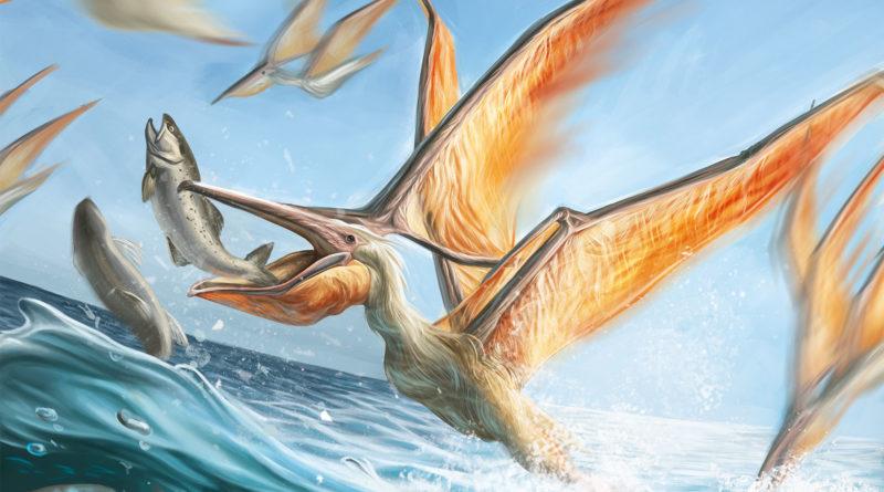 Никтозавр: Тайна древнего ящера