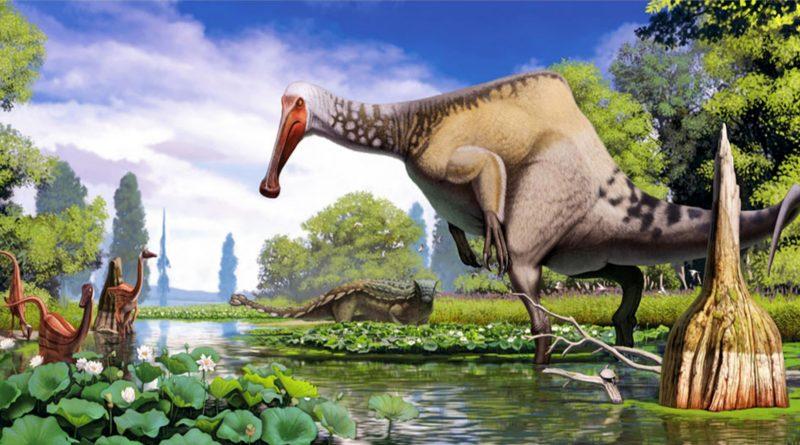 Дейнохейрус: Тёплый, мягкий и пушистый динозавр