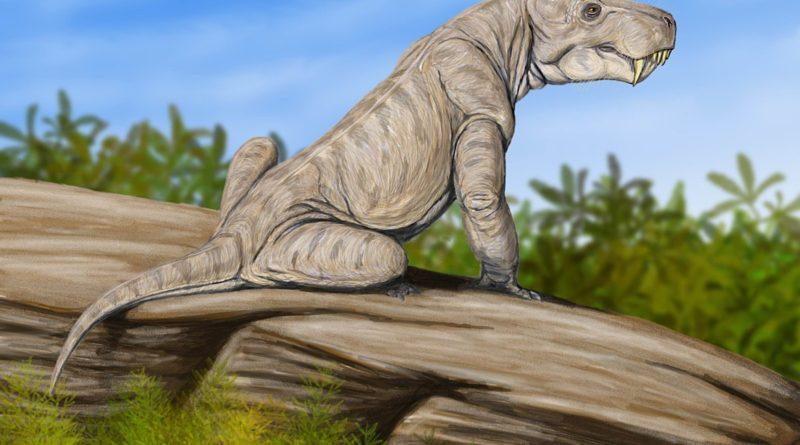 Диногоргон: Доисторический котик