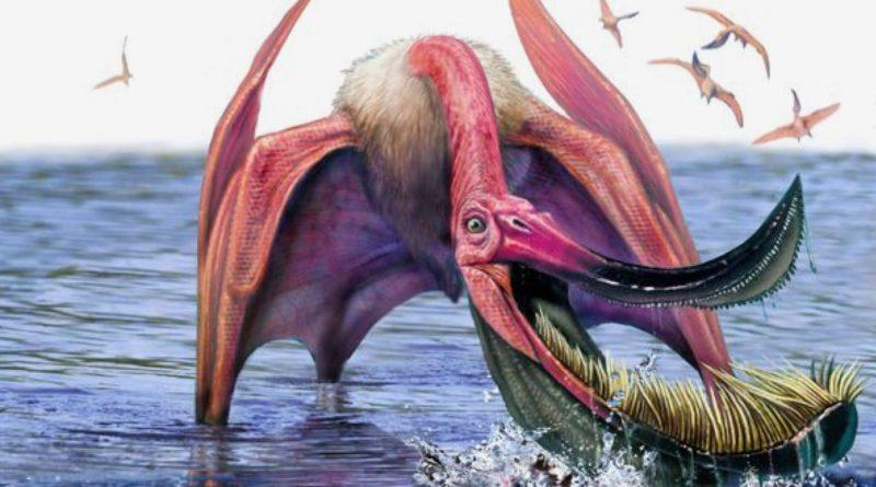 Птеродаустро: Летающий ящер с кучей зубов