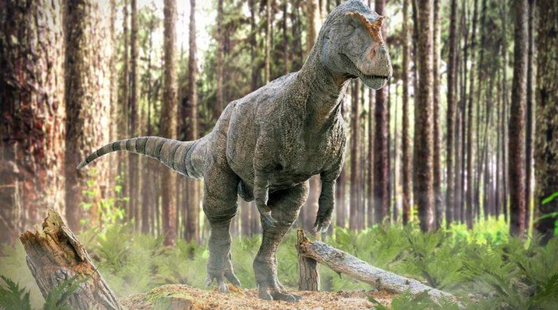 Мегалозавр: Прототип Годзиллы