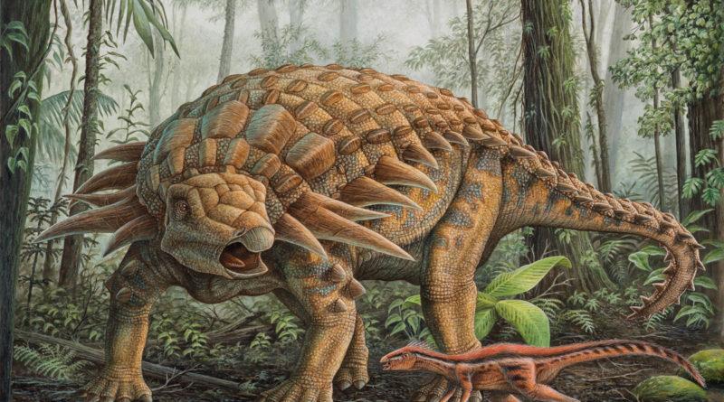 Парейазавр: Доисторический бронетранспортер
