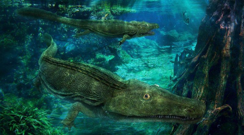 Прионозух: Крокодил в теле амфибии