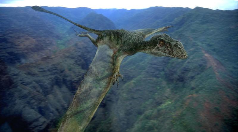 Диморфодон: Нечто среднее между тираннозавром и птеродактилем