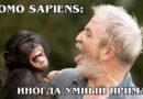 ЧЕЛОВЕК РАЗУМНЫЙ: Узконосый примат-приспособленец с большим мозгом | Интересные факты про приматов и людей