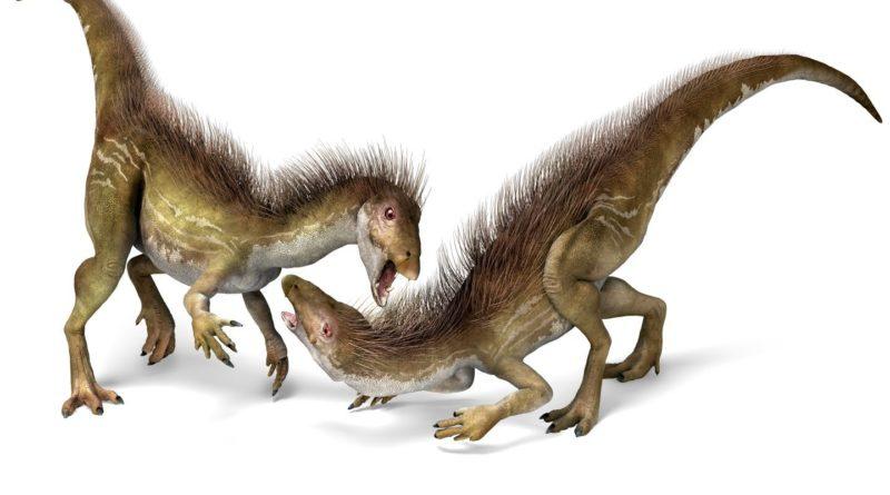 Гетеродонтозавр: Динозавр с самого дна пищевой цепи