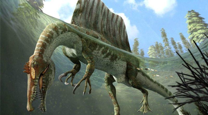 Спинозавр: Эволюция гигантского динозавра