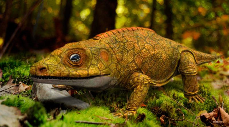 Какопс: Доисторический ящер пермского периода