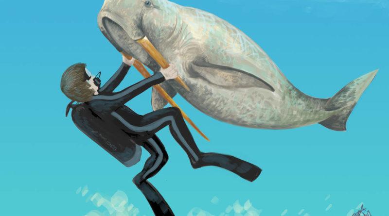 Моржевидный дельфин: Доисторический кит с бивнями